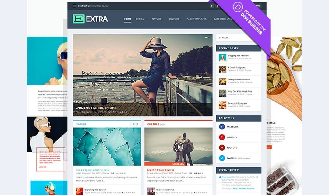 Divi Extra theme modify the footer bottom bar text